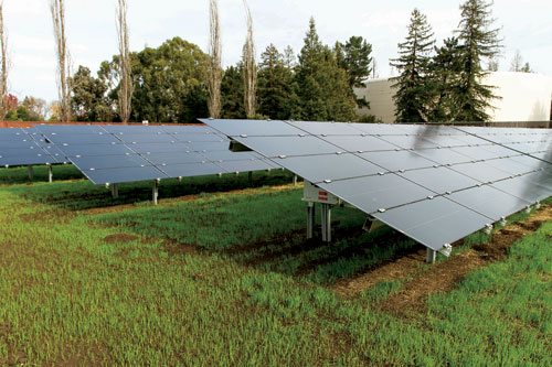 SVP's New Solar Array is an All-Around Win