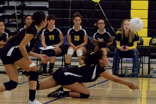 Momentum Swings in Chargers' Favor, Sweep Bruins in Straight Sets