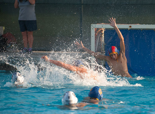Wilcox Water Polo Bests Bruins