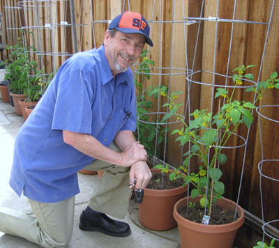 Midwestern Transplant Shares Home-grown Heirloom Tomato Seedlings with Community