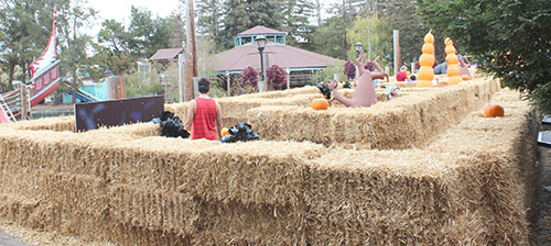Great America's Great Pumpkin Fest Offers Non-Scary Delights