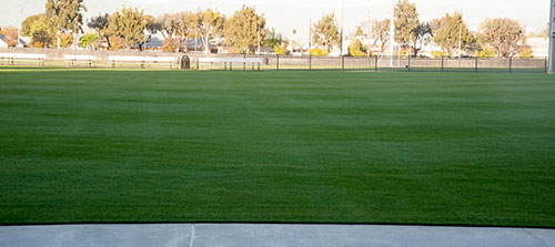 Soccer Field Restoration