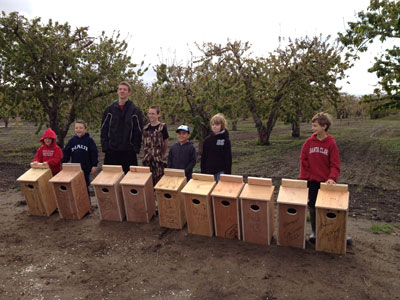 Santa Clara Cub Scouts From Pack 43 Help To Protect Nature
