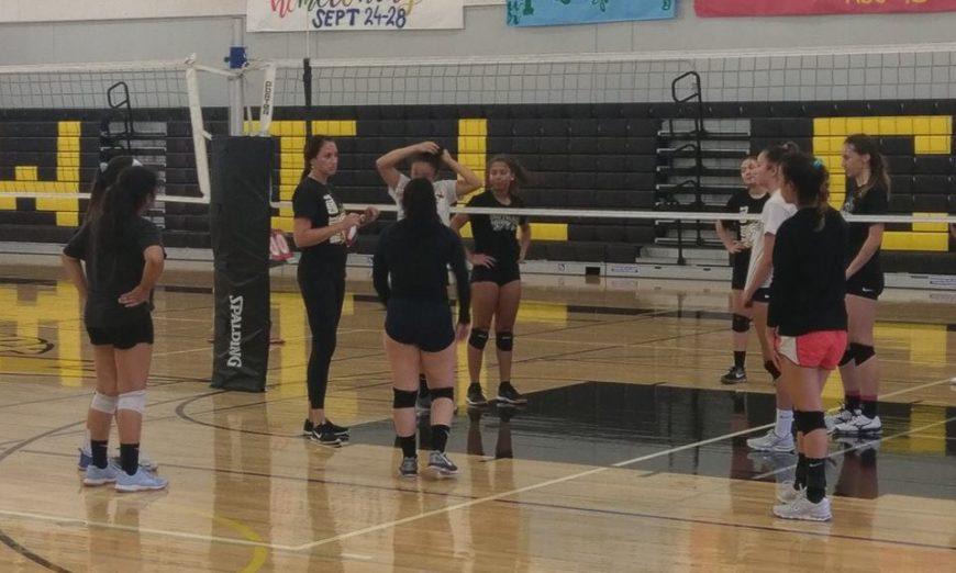 Wilcox Volleyball