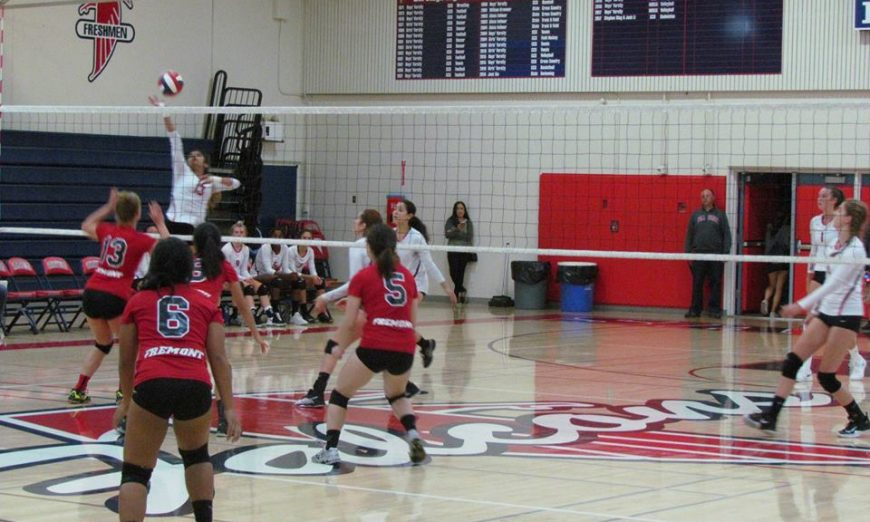 El Camino League Fremont Firebirds Volleyball