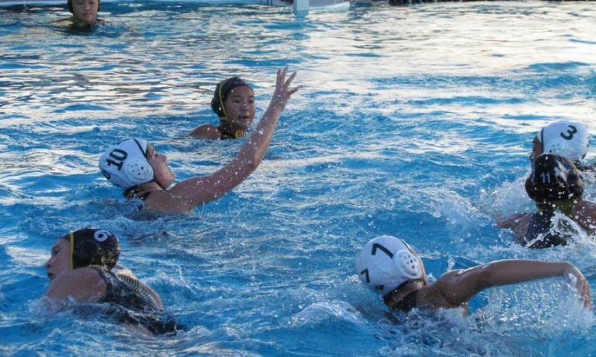 Wilcox Chargers Water Polo