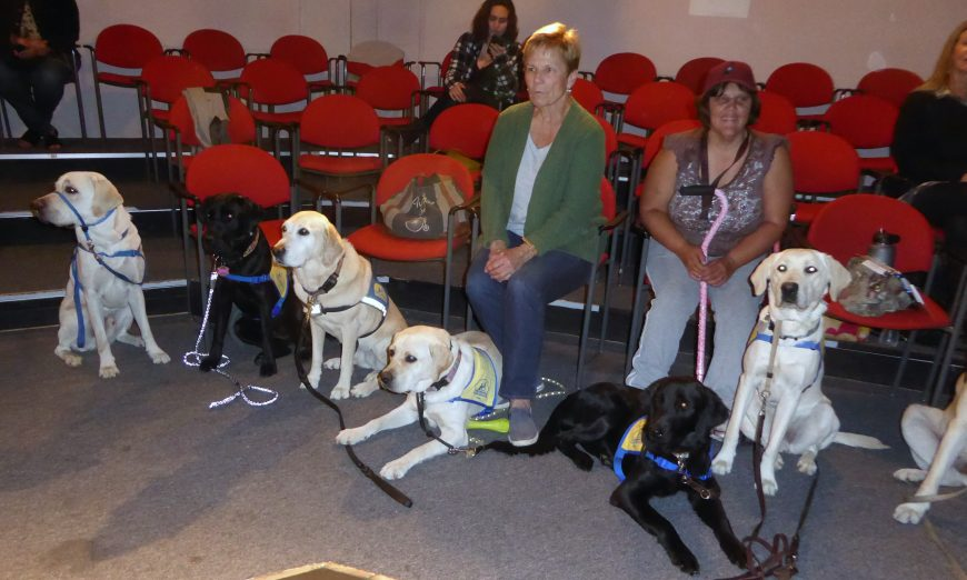 CCI Canine Companions for Independence