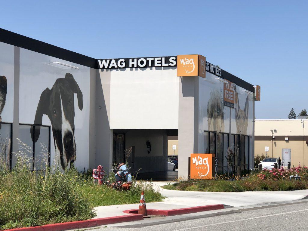 Santa Clara's Wag Hotel Responds After Dog Attacks Four