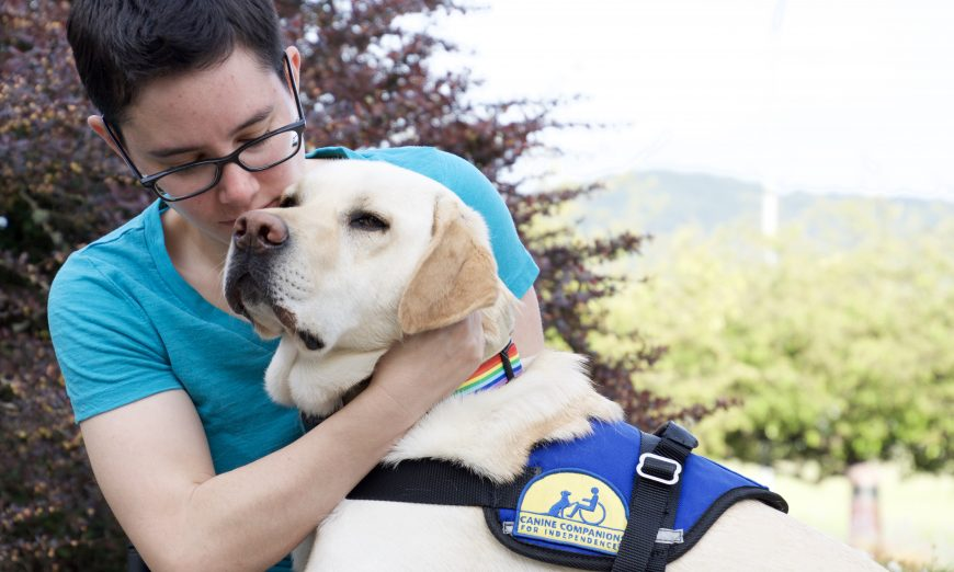 Canine Companions for Independence is on a mission to end Service Dog Fraud. Untrained dogs are a danger to service dogs and those who need them.