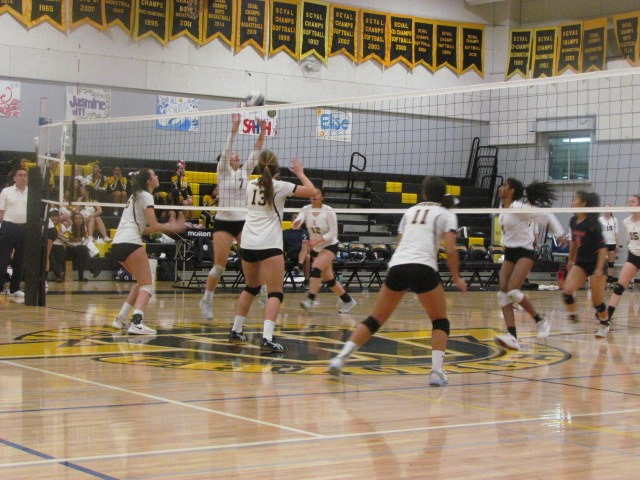 The Wilcox Volleyball lady chargers tried hard to win at their last game, but it ended in a loss. Star freshman Clare Oudard played well.