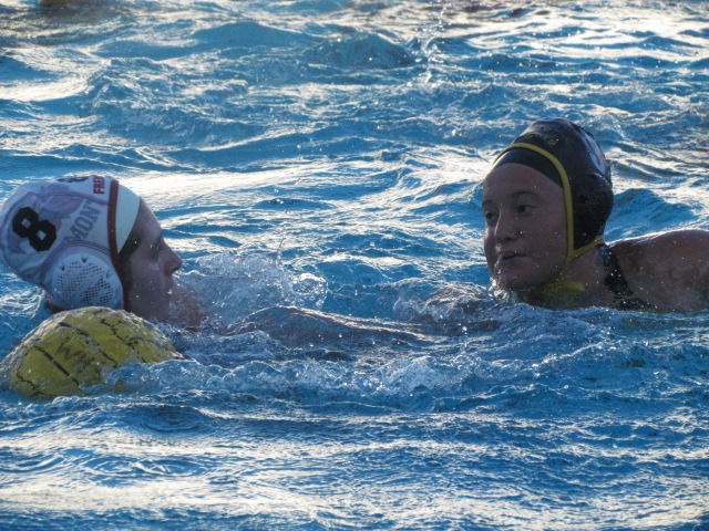 The Wilcox Chargers took on the Fremont Firebirds in a Water Polo match. Marisa Lipari from Wilcox and Shreya Kale from Fremont kept the game interesting.